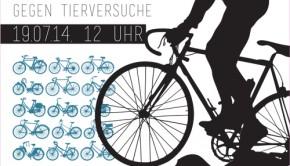 Fahrraddemo Flyer 19.7