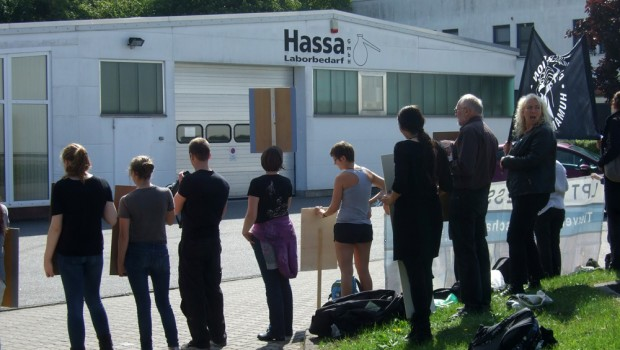 Demo Hassa 0209 - 01