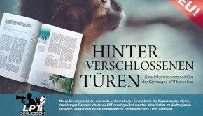 Broschüre Werbebild v2